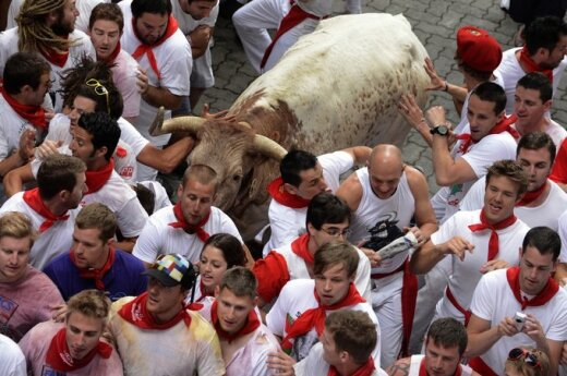 Bulių bėgimas Pamplonoje