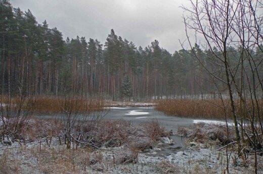 Прогноз: после мокрого снега и бурь ожидается мороз