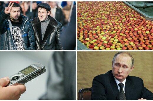 Международная афера: польские яблоки попали в Литву, стали молдавскими и оказались в России