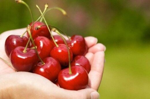 Sprzedaż polskich owoców przez sieci handlowe może zmniejszyć negatywne skutki rosyjskiego embarga