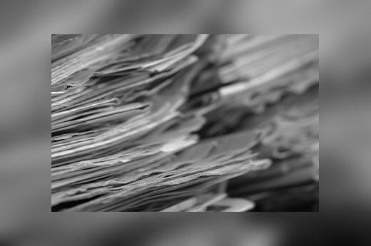 Spauda, laikraščiai, žurnalistika