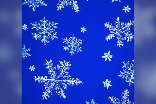 snaigės, sniegas, žiema