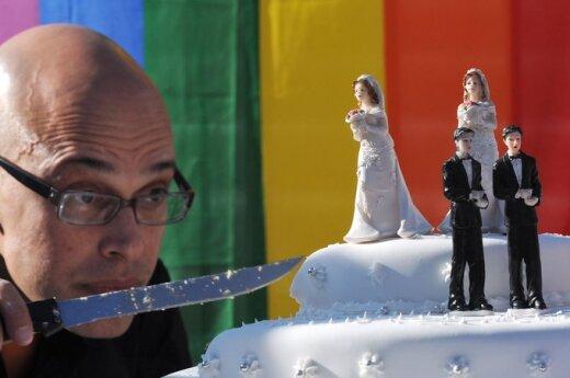 ЕП призывает Грибаускайте наложить вето на гомофобский закон