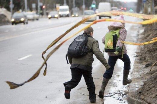 Пожарные-спасатели во вторник почти 100 раз выезжали на устранение последствий шквала
