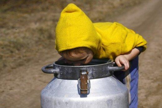 Беларусь возобновила молочные поставки в РФ