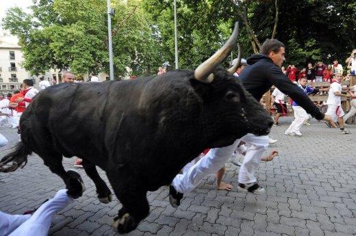 Hiszpania: Pięć osób odniosło rany podczas gonitwy byków