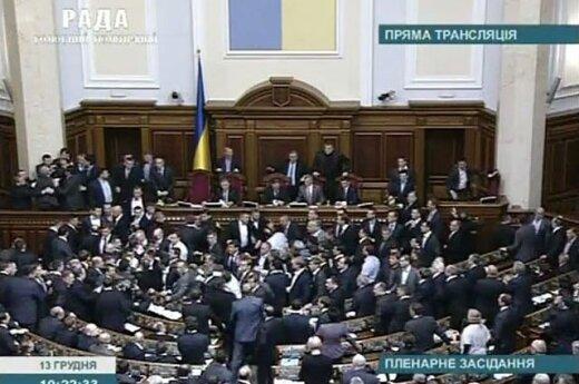 Депутаты украинской Рады подрались и выбрали спикера