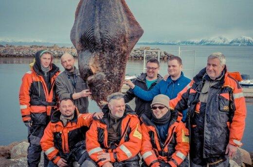 Lietuviai Norvegijoje sugavo milžinišką otą