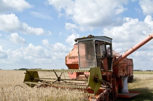 Lithuania's 2014 grain harvest hits all-time record