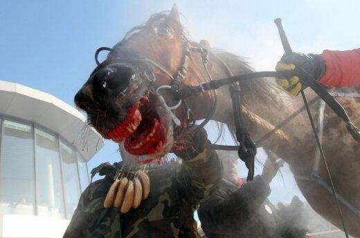Wielka Brytania: W Burger Kingu znaleziono ślady DNA konia