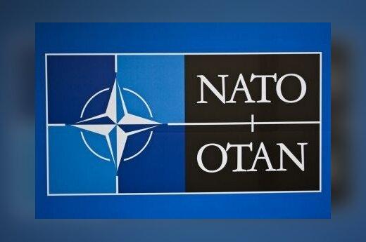 Украину и Грузию пригласят на саммит НАТО