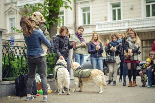 Gatvės muzikos dienoje koncertavo ir šunys