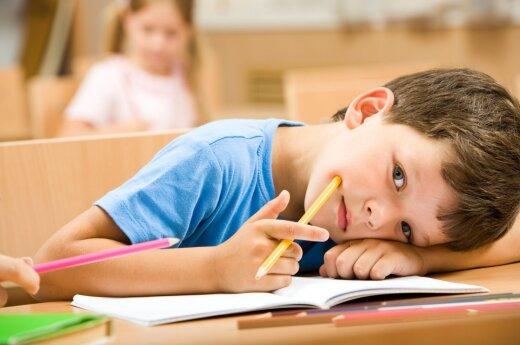 Литва и Швеция для школ Восточной Украины выделят 220 000 евро