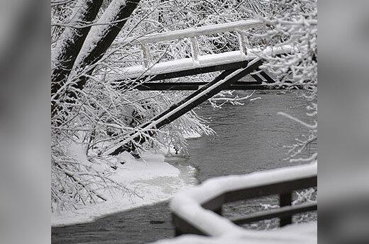 Žiema, sniegas, šaltis, upė, miškas, gamta, Vilnelė