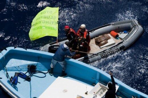 В Японии активистам Greenpeace дали условный срок