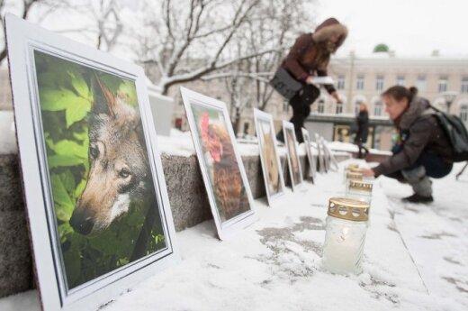 Gyvūnų teisių dienos proga -  edukacinis renginys  ir protestas
