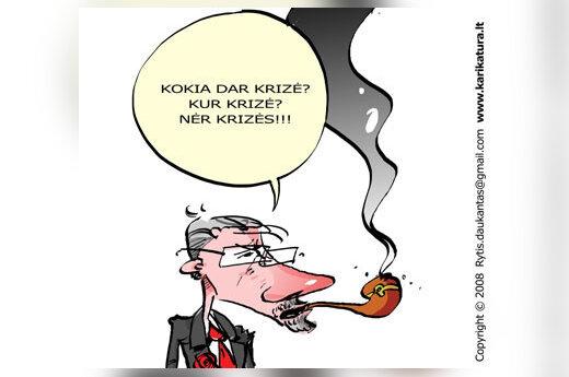 Gediminas Kirkilas, krizė, ekonomika, karikatūra