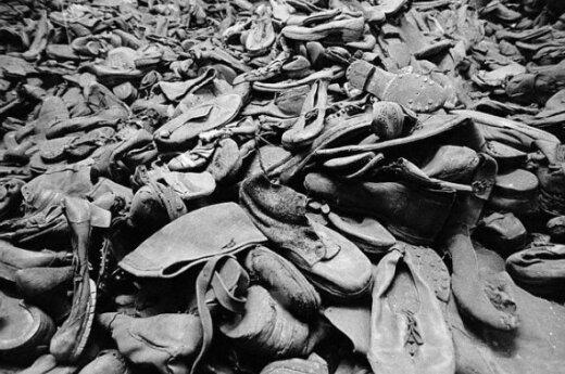 S.Wiesenthalio centras: nuteiskite lietuvį Holokausto neigėją