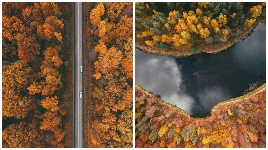 Види литовської природи потрясли світ
