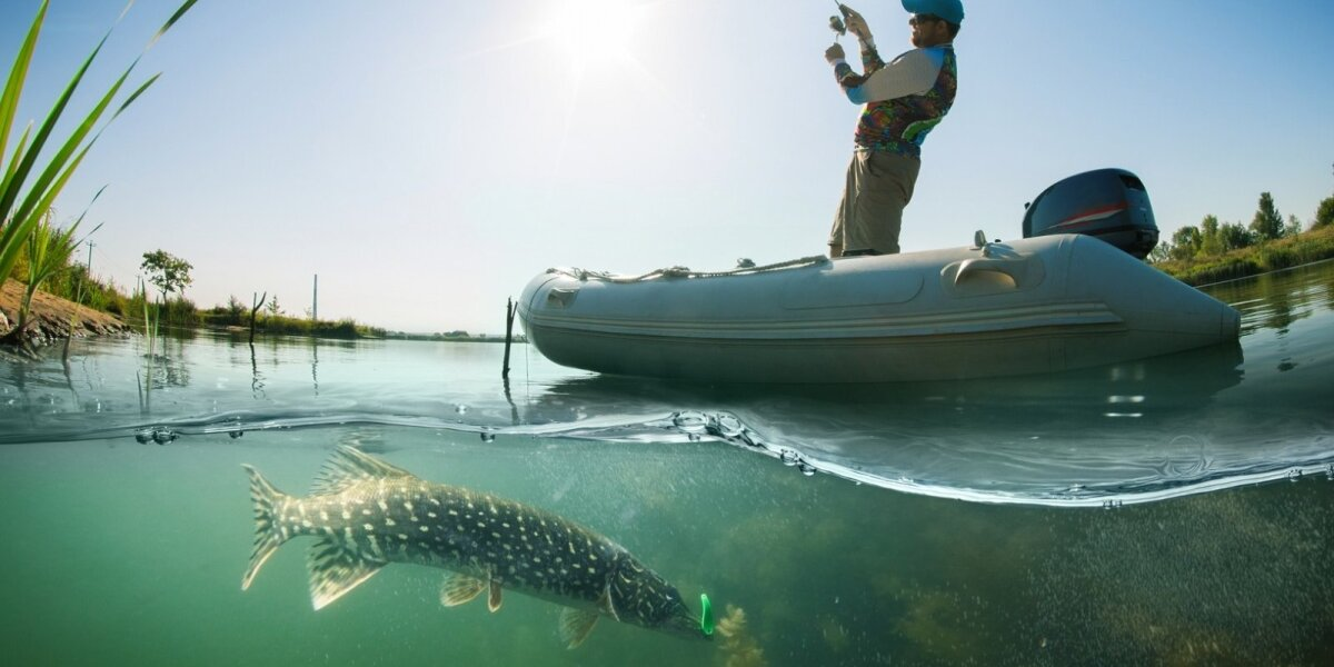 Lydekų žvejyba