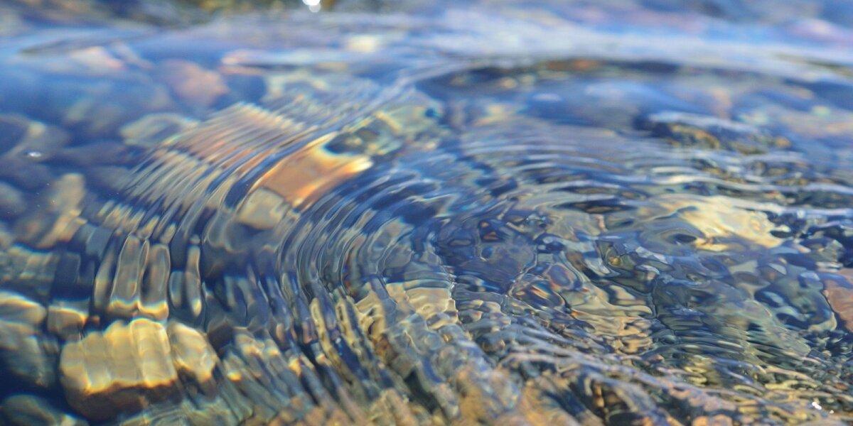 Pasaulis mini vandens dieną