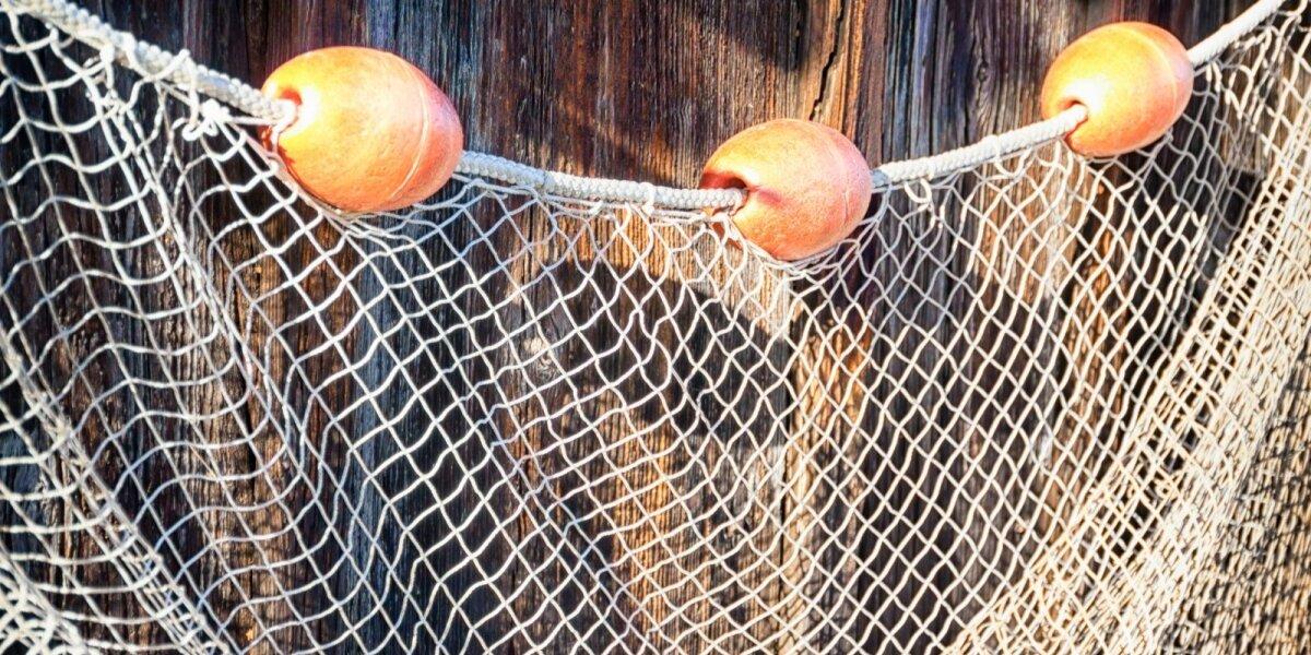 Tinklai verslinė žvejyba