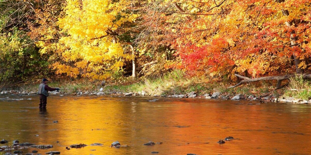 Žvejyba upėje rudenį