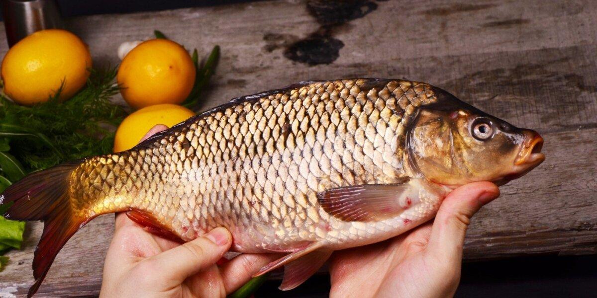 Dažnas žuvies valgymas pašalina daugelio sunkių susirgimų riziką