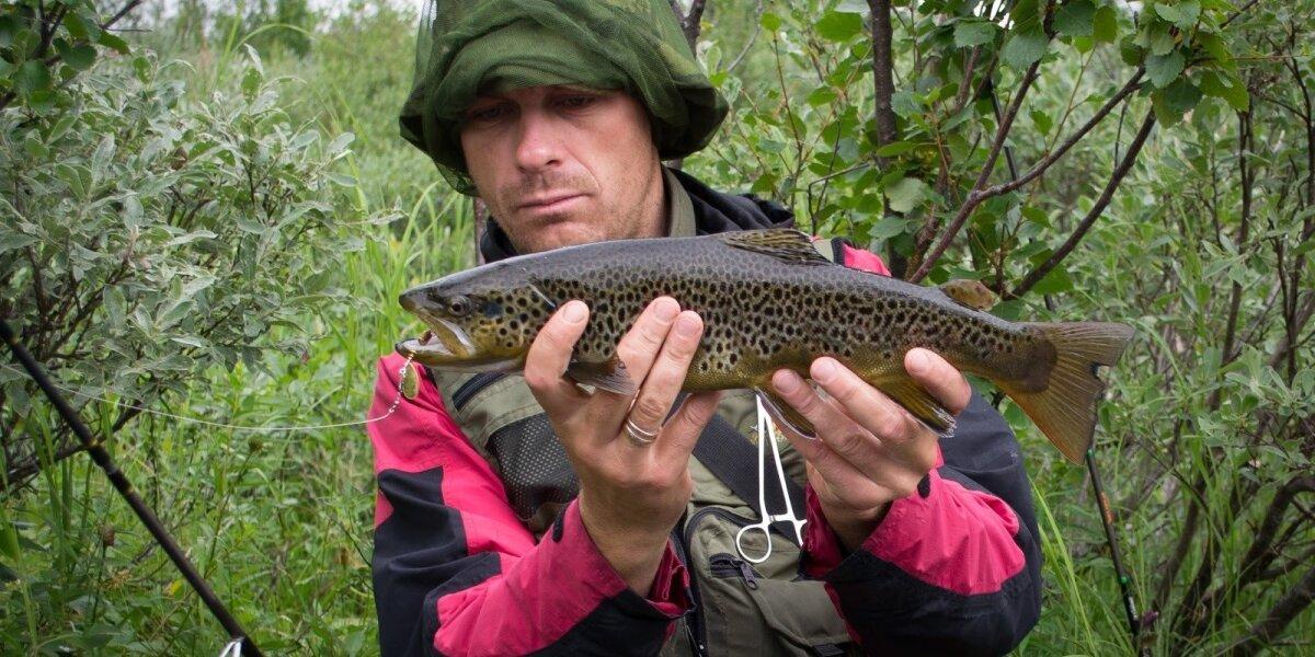 """Akimirka iš """"Žvejo dienoraščio"""" žūklės ekspedicijos Švedijoje"""