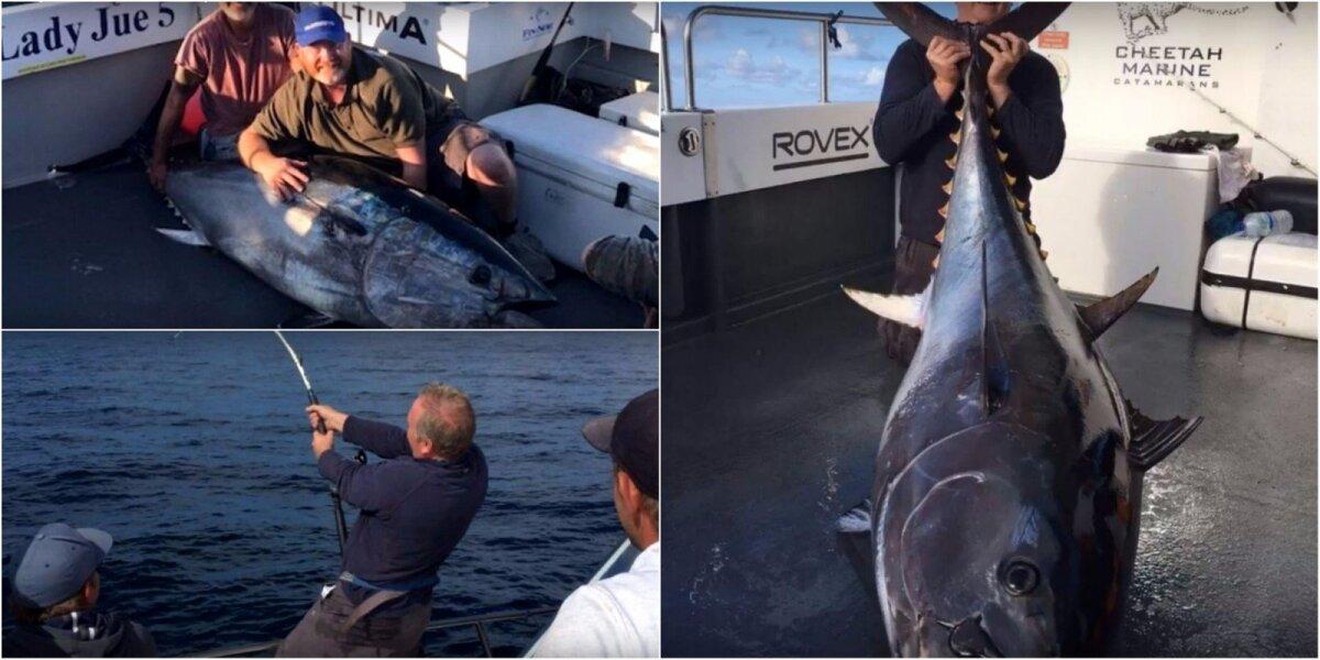 Didžiosios Britanijos vandenyse sugautas laimikis - 235 kg svėręs tunas