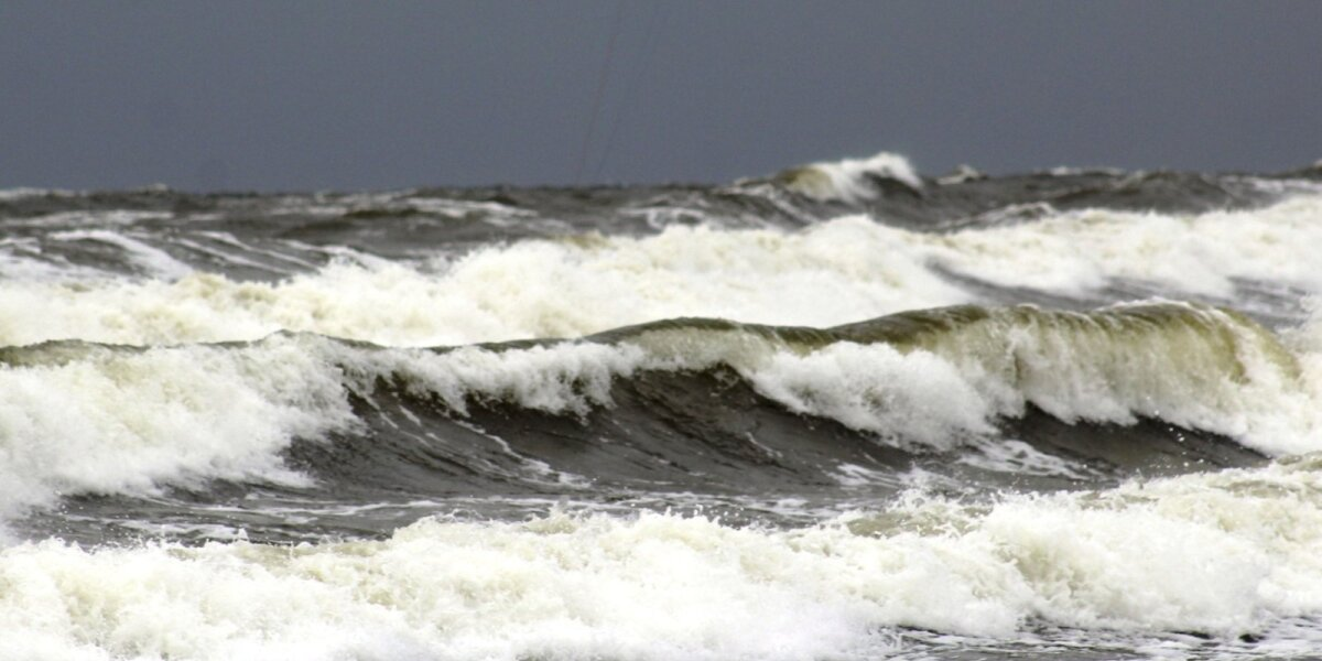 Tarša Baltijos jūroje
