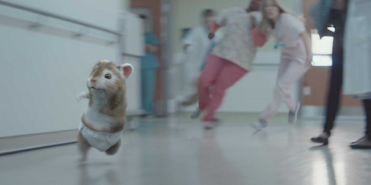 """""""Kia"""" reklaminiai žiurkėnai sugrįžo su nauju šeimos nariu"""