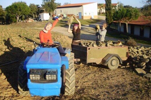 Obywatele Polski wydzierżawiają ziemię na Litwie