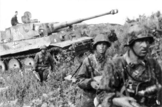 Brytyjski polityk oskarża Polskę o wywołanie II Wojny Światowej