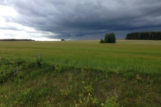 Savaitės orai: ko tikėtis