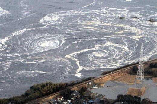 Japonia: Silne trzęsienie ziemi niedaleko wybrzeża