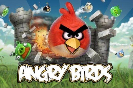 """""""Angry Birds"""" w kinach w 2016"""